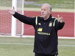 Spaniens Erfolgtrainer Vicente Del Bosque ärgert sich über die Medien