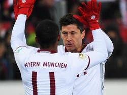 Robert Lewandowski trifft und trifft und trifft für den FC Bayern
