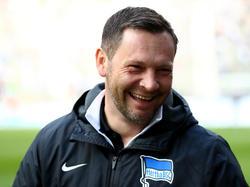 Pál Dárdai freut sich auf das Auswärtsspiel seiner Herthaner in Köln