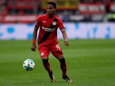 Wendell hat sich in Leverkusen als Leistungsträger etabliert