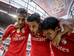 Die Benfica-Spieler feiern den 35. Titel der Vereinsgeschichte