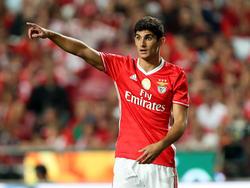 Gonçalo Guedes wechselt von Benfica zu Paris Saint-Germain
