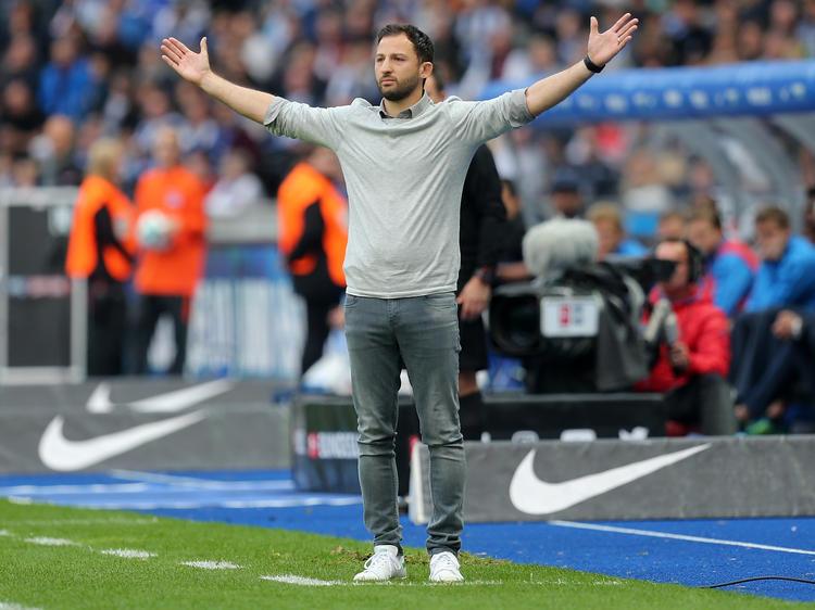 Domenico Tedesco vom FC Schalke 04 hofft auf die Vertragsverlängerung von Leon Goretzka und Max Meyer
