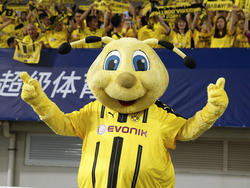 Verschafft der BVB dem FC Rielasingen-Arlen europaweite Bekanntheit?