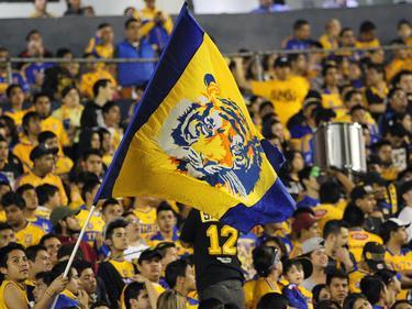 Die Tigres-Fans haben derzeit Grund zur Freude