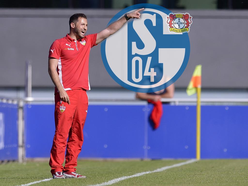 Tedesco ersetzt Weinzierl bei Schalke 04