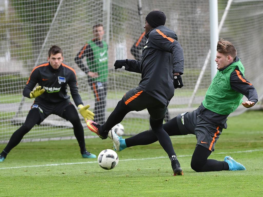 Hansa Rostock holt Mittelfeldspieler von Hertha BSC II