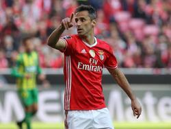 Jonas darf seinen Torhunger weiter bei Benfica stillen