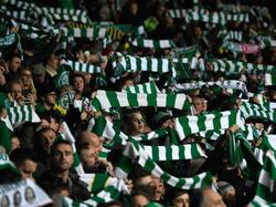 Die Fans des Celtic FC haben fast jede Woche Grund zu jubeln