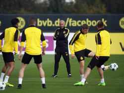 Peter Bosz ist seit dem Sommer Trainer des BVB