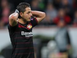 Chicharito könnte gegen Hoffenheim wegen einer Erkältung ausfallen