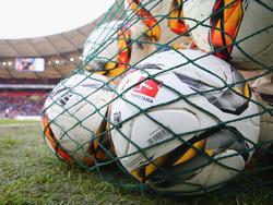 Fußball-Erstligist Turbine Potsdam verstärkt sich
