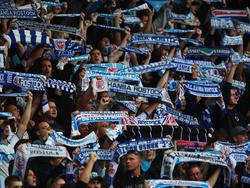 DFB-Sportgericht hebt das Fahnenverbot gegen Rostock auf