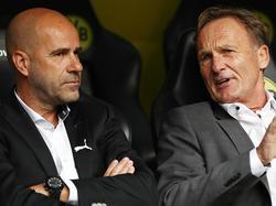 Hans-Joachim Watzke (r.) nimmt BVB-Trainer Peter Bosz in Schutz