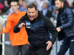 Pál Dárdai war alles andere als zufrieden mit der Hertha-Niederlage