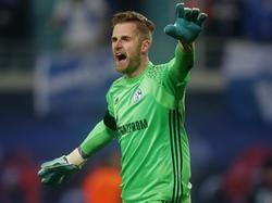 Fährmann ist Vorzeige-Profi beim FC Schalke 04