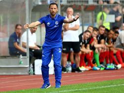 Domenico Tedesco hinterlässt auf Schalke bisher einen hervorragenden Eindruck