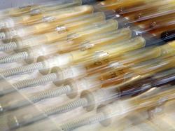 Alle Dopingproben im Rahmen der EM sind negativ