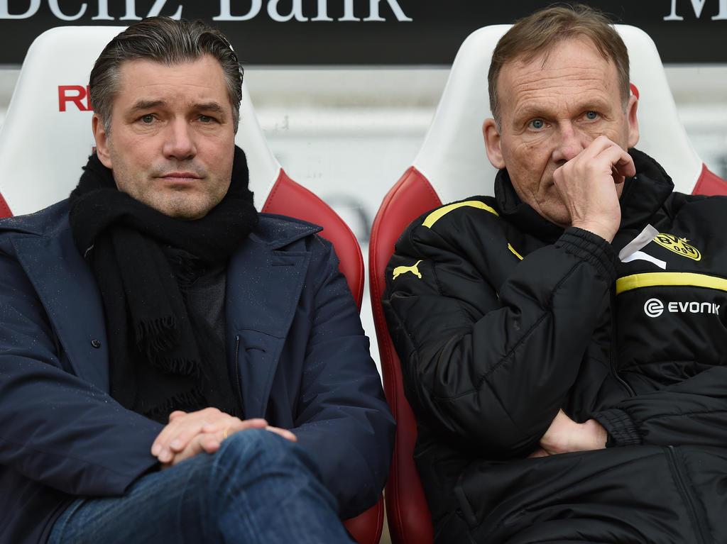 Bundesliga Borussia Dortmund trennt sich offenbar von Trainer Peter Bosz