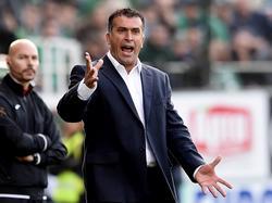 Anastasiou ist nicht mehr Trainer von Panathinaikos