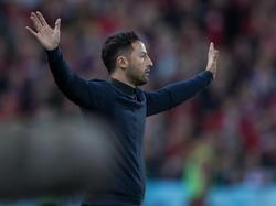 Domenico Tedesco freut sich über den guten Saisonstart der Schalker