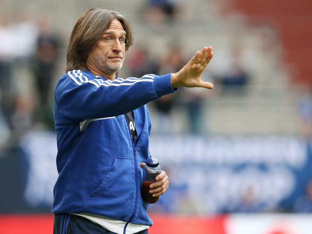 Norbert Elgert schließt Trainer-Engagement vorerst aus