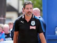 Manager des Monats in der Premier League: David Wagner