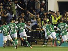 Angel Haro wird neuer Präsident bei Betis Sevilla