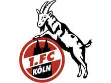 Nico Reese wird neuer Trainer der Frauen beim 1. FC Köln