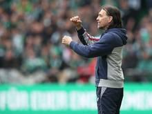 Schmidt trifft mit Mainz auf Sevilla und Liverpool