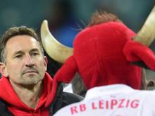 Beierlorzer könnte Trainer bei Regensburg werden