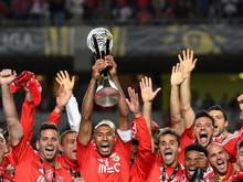 Benfica feiert den Ligapokal-Sieg in Coimbra