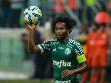 Zé Roberto hat seinen Vertrag bei Palmeiras verlängert