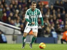 Van der Vaart hat bei Sevilla keine sportliche Zukunft